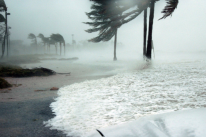 Hurricane Preparedness: Start Planning Now